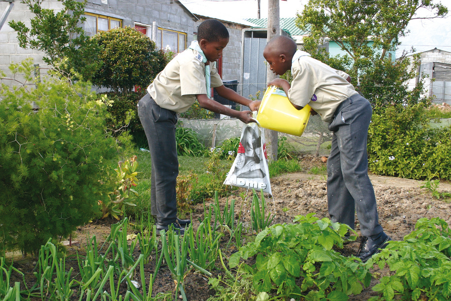 Scouts from South Africa, recycling water in their local scout group where they have a vegetable farm