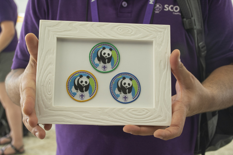 new badge presentation in the GDV, panda badge, public Launch of the New Pana BADGE Partnership between World Scouting and WWF